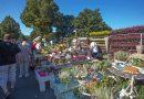 Wenn Nachbarn gemeinsam Erdäpfel schälen und Musiker auch abseits der Bühne spielen, ist wieder Kartoffelmarkt in Stemmer
