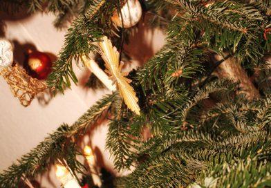 """Bis zum """"Knut""""-Tag die Weihnachtsbäume entsorgen"""