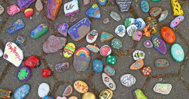 Bemalte Steine erobern die Welt – Trend aus den USA auch in Petershagen beliebt