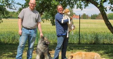 Endlich ein glückliches Hundeleben – Eine zweite Chance für Beagle aus Versuchslaboren